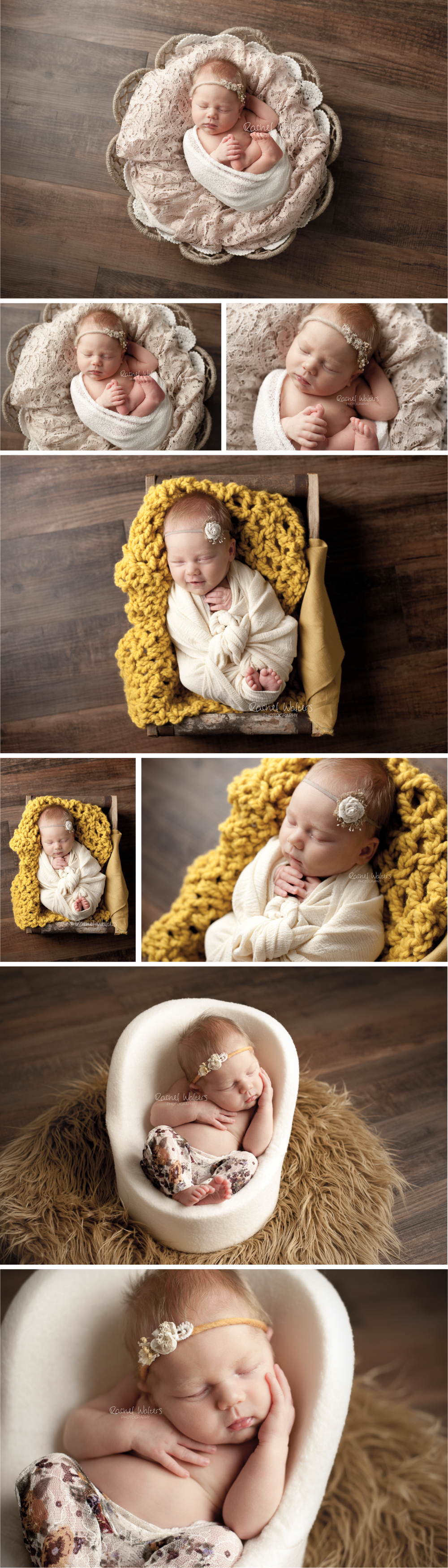 Chesterfield Michigan Newborn Photographer