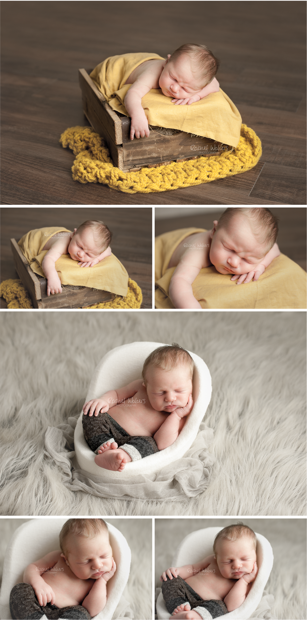 Macomb County Newborn Photographer