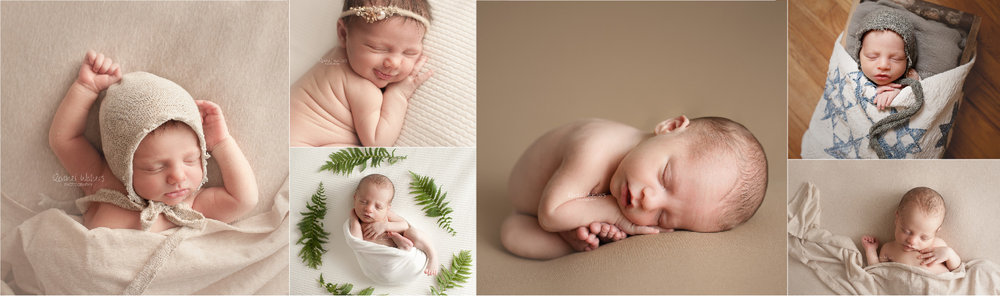 Mt. Clemens Newborn Photographer