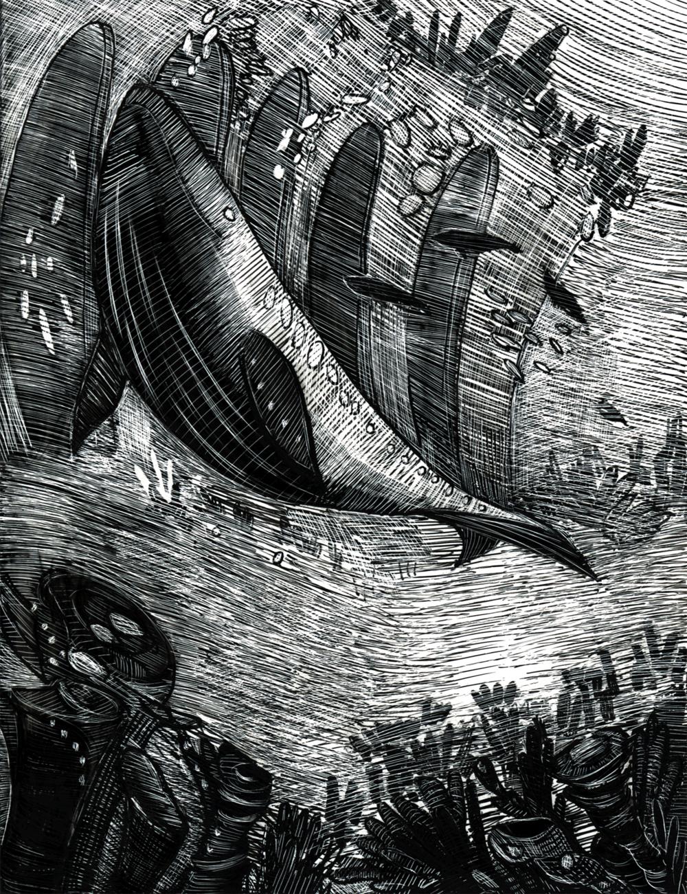 """Whale. Scratchboard. 5 x 6.5""""."""