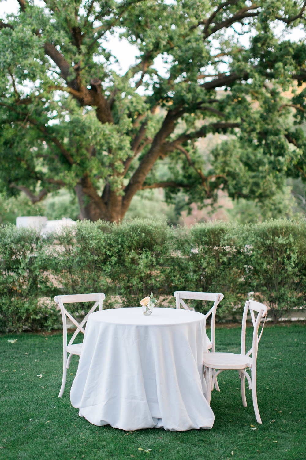Brookview-Ranch-Styled-Shoot-443.jpg