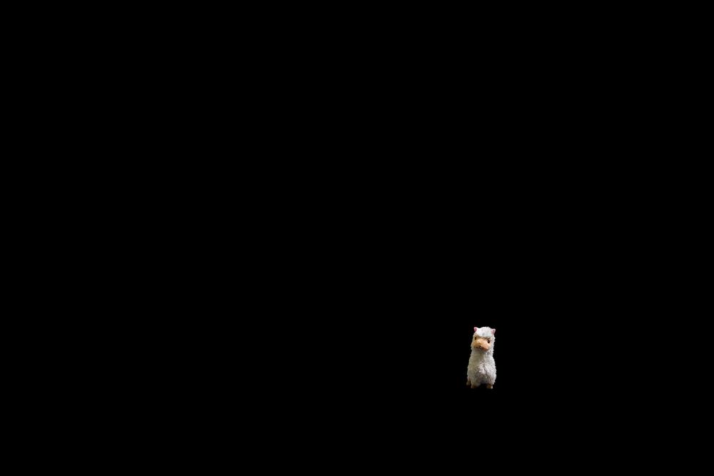 minimal llama
