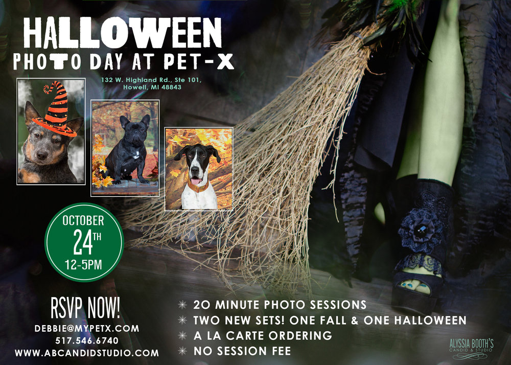 PetX Fall Photo Day | Alyssia Booth's Candid & Studio | Howell Mi | Pet Photographer
