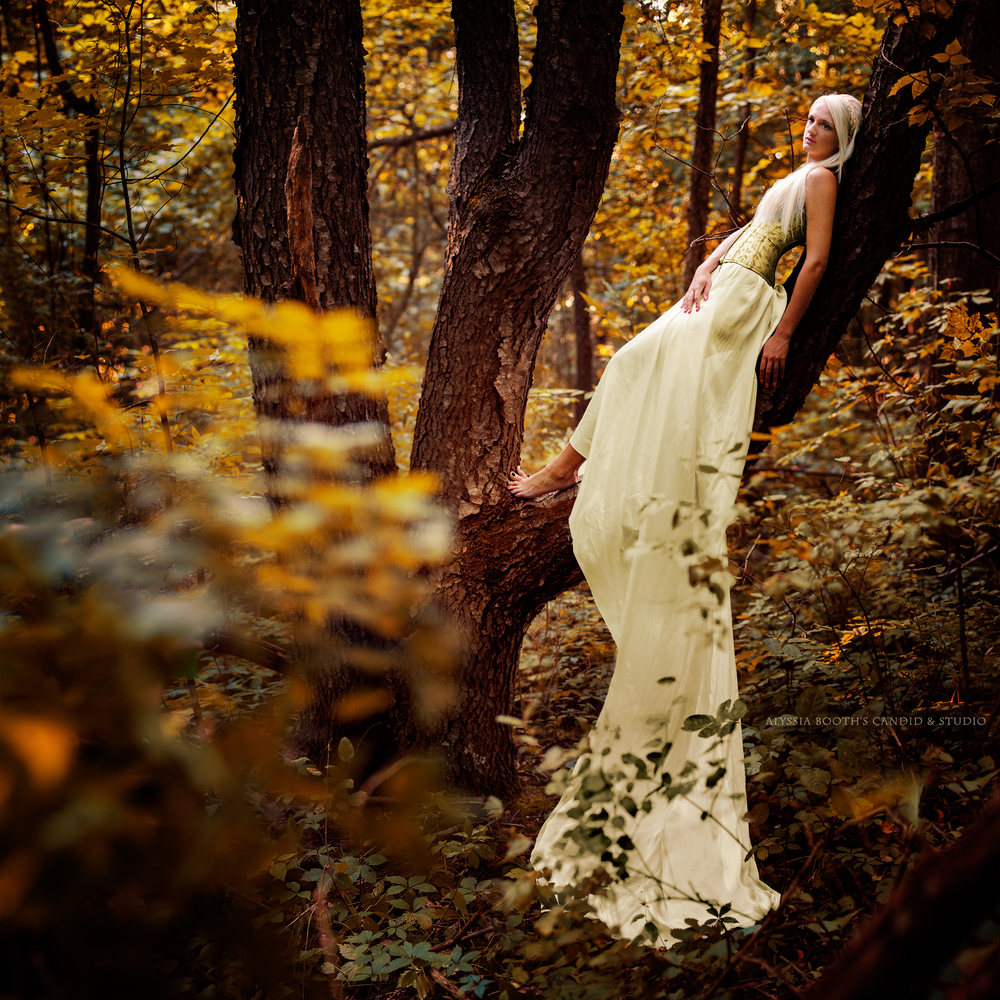 Golden Fall | Alyssia Booth's Candid & Studio