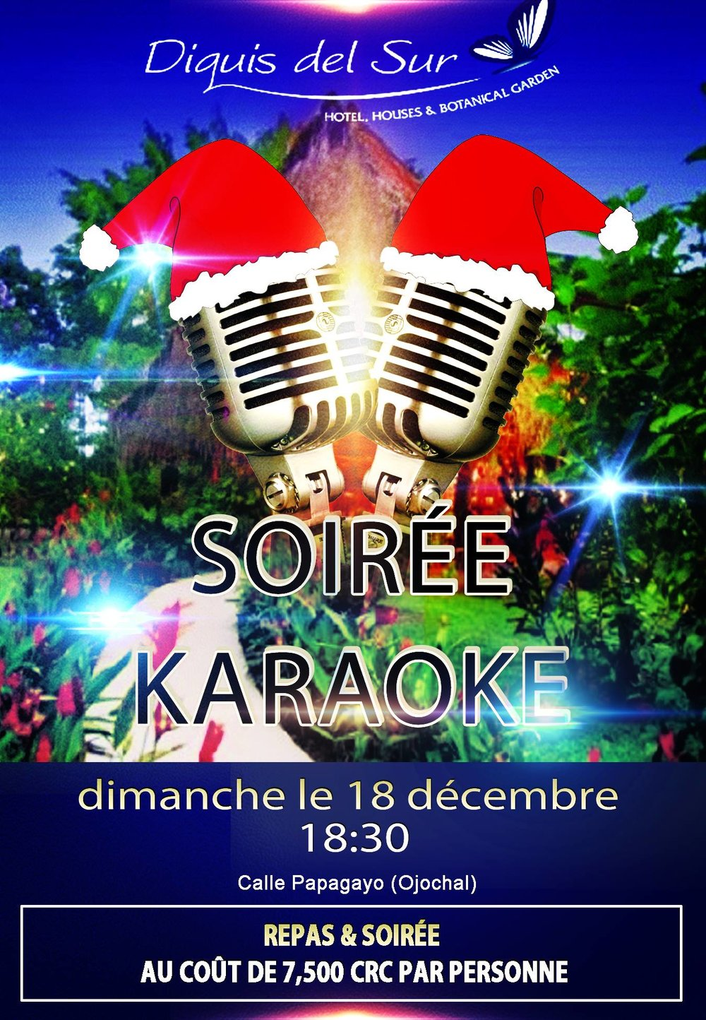 Christmas Karaoke at Diquis Del Sur — Costa Concierge