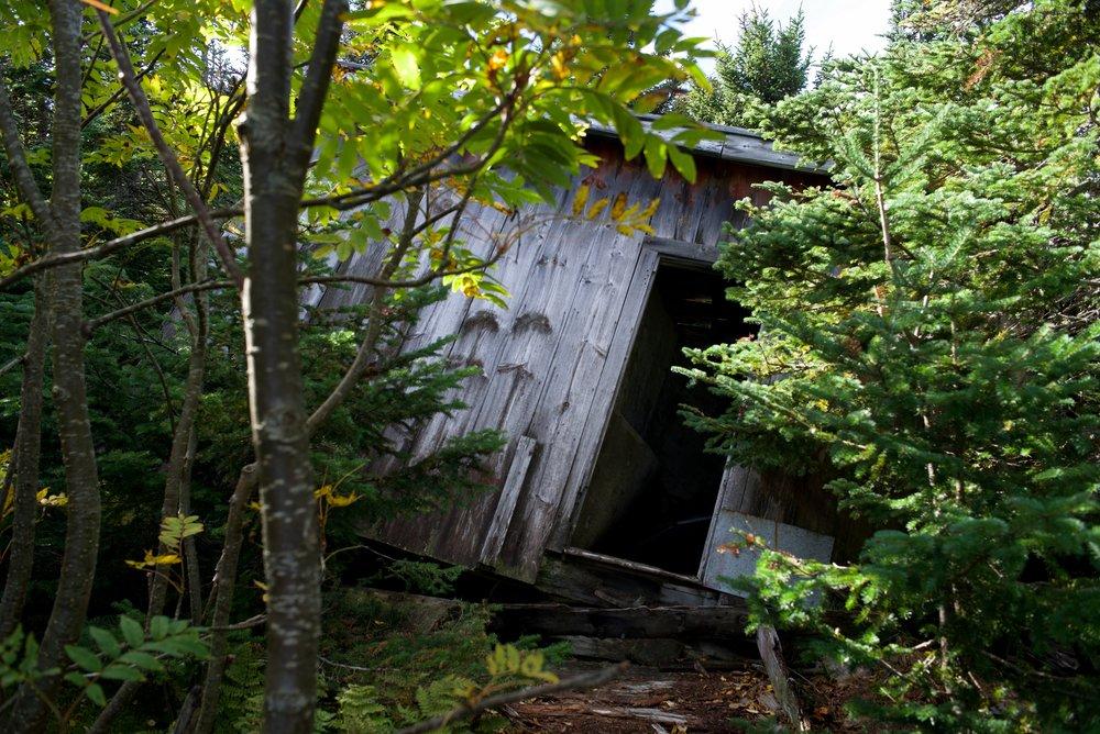 old_cabin_2.jpg