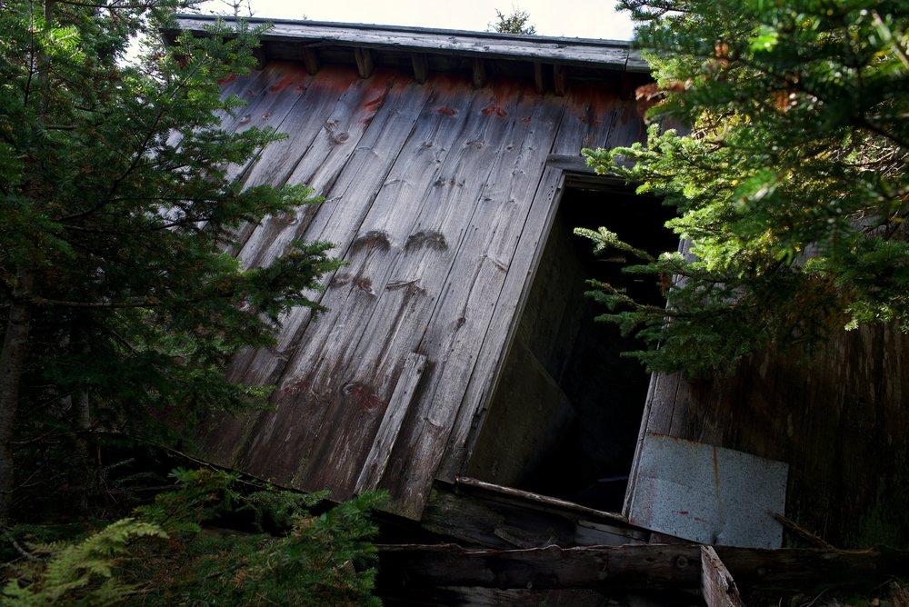 old_cabin_1.jpg
