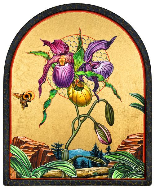peter-d-gerakaris-orchid-icon-DSC_2780-1500px.jpg