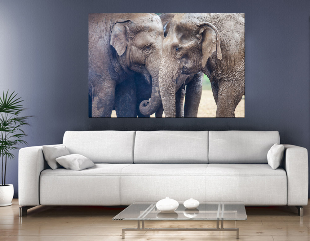 RE_Elephant_livingroom.jpg