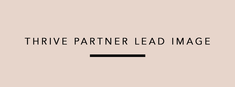 Thrive Partner_Lead Graphic.jpg
