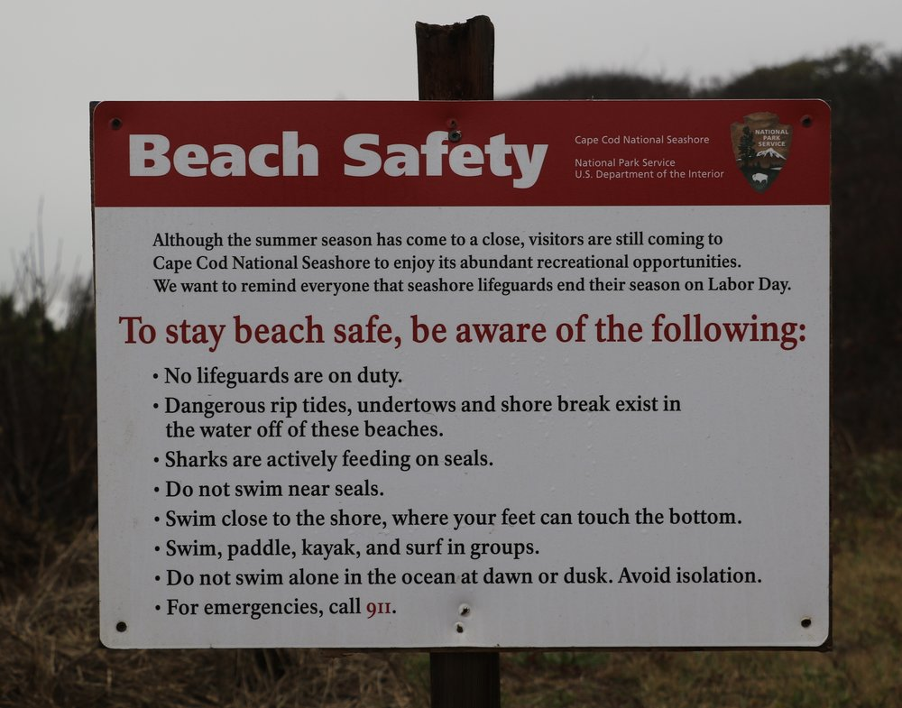 Beach Safety Rules (Watch for Sharks!)