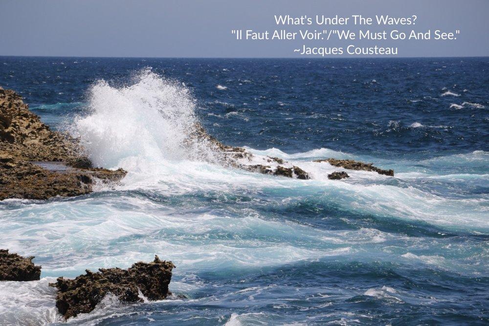 What's Under the Waves? Photo Credit: Liz Summit, 2016
