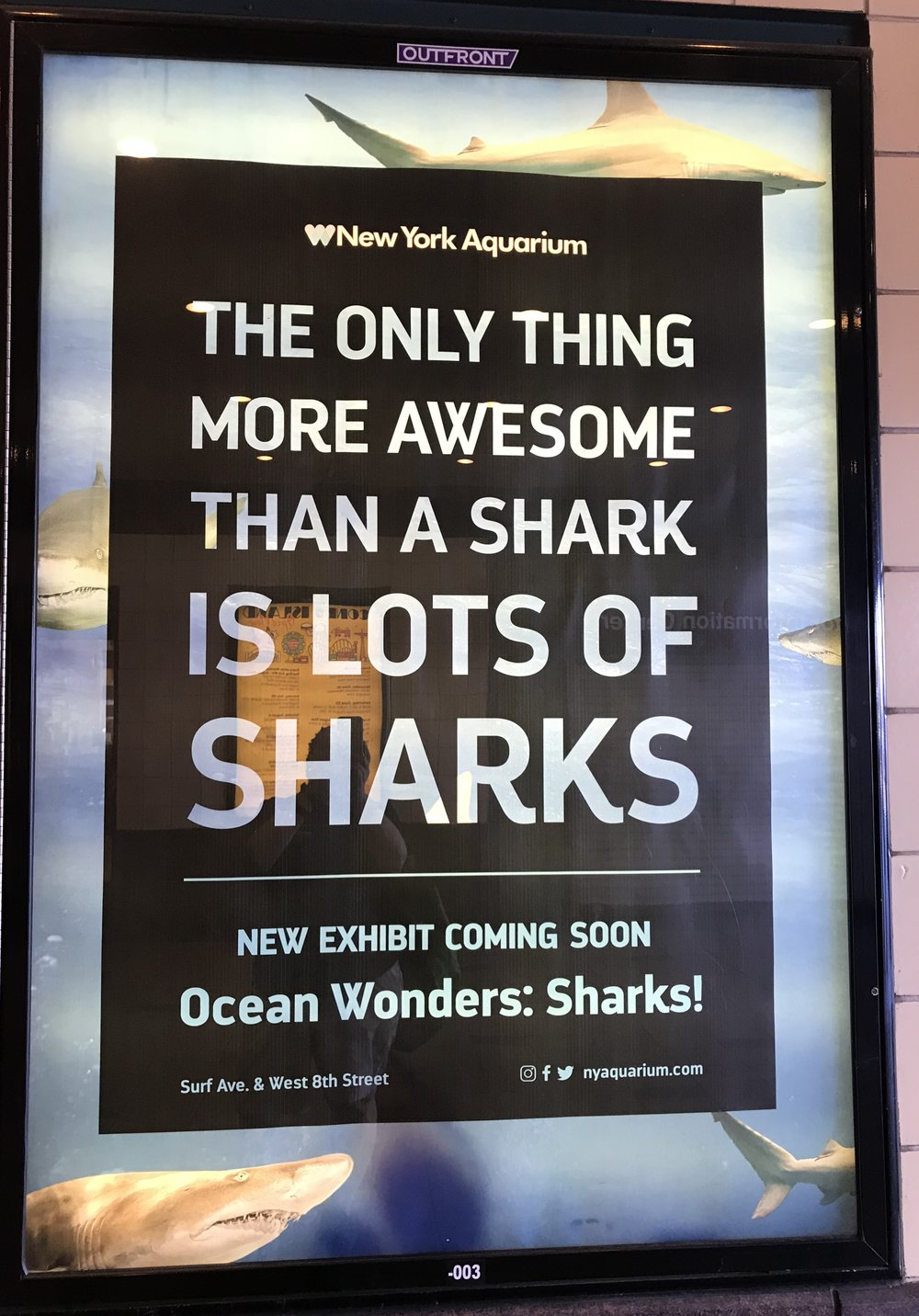 Subway Ad, Coney Island Subway Station  Photo Credit: Liz Summit, 2018