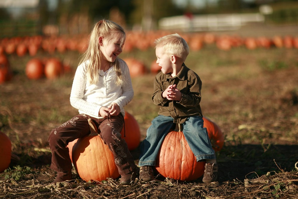 Pick your own pumpkins at the Fall Festival, also including two corn mazes and many other family friendly activities such as the pumpkin patch (pick your own pumpkins) at our farm.