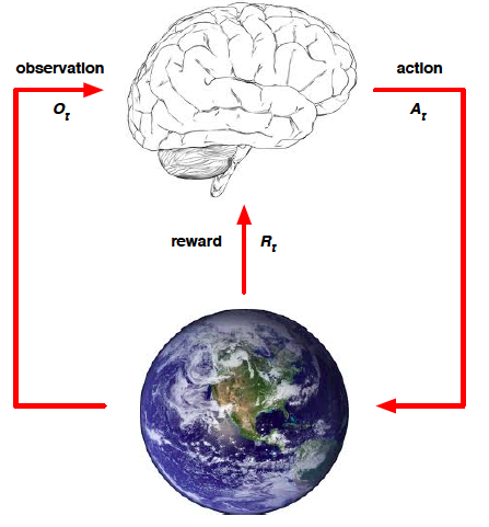 The brain is an agent. The globe is the world.