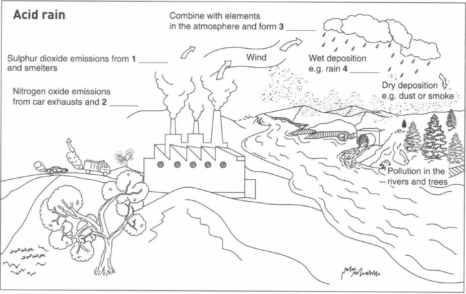 Ielts writing eshare ielts ielts listening labelling a diagram ccuart Choice Image