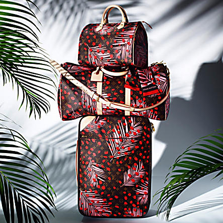 Louis Vuitton luggage palm springs collection