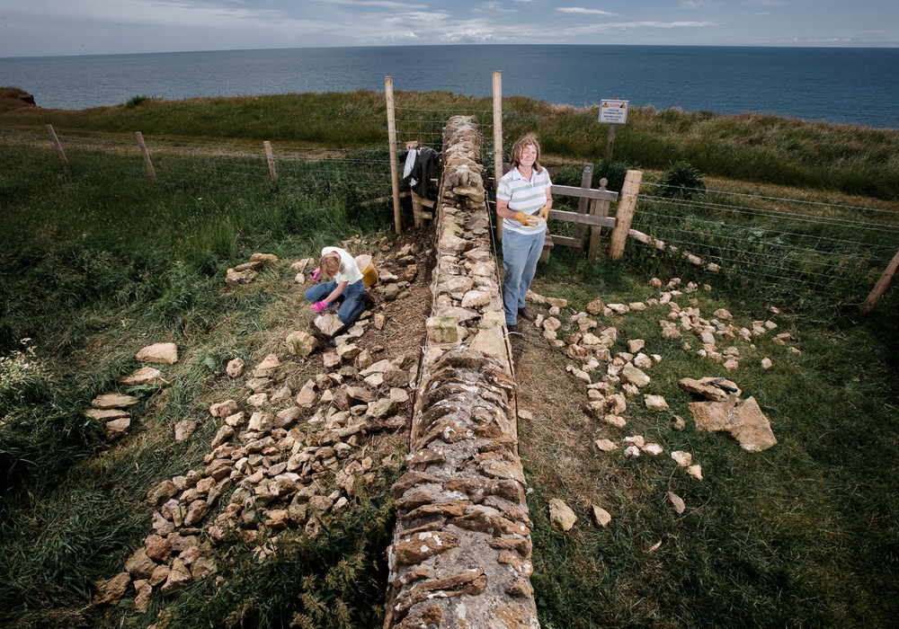 Dry stone walling at the National Trust Burton Bradstock site