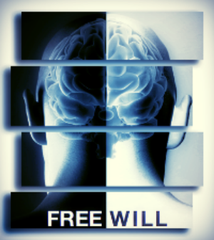 Free will and the sense of self