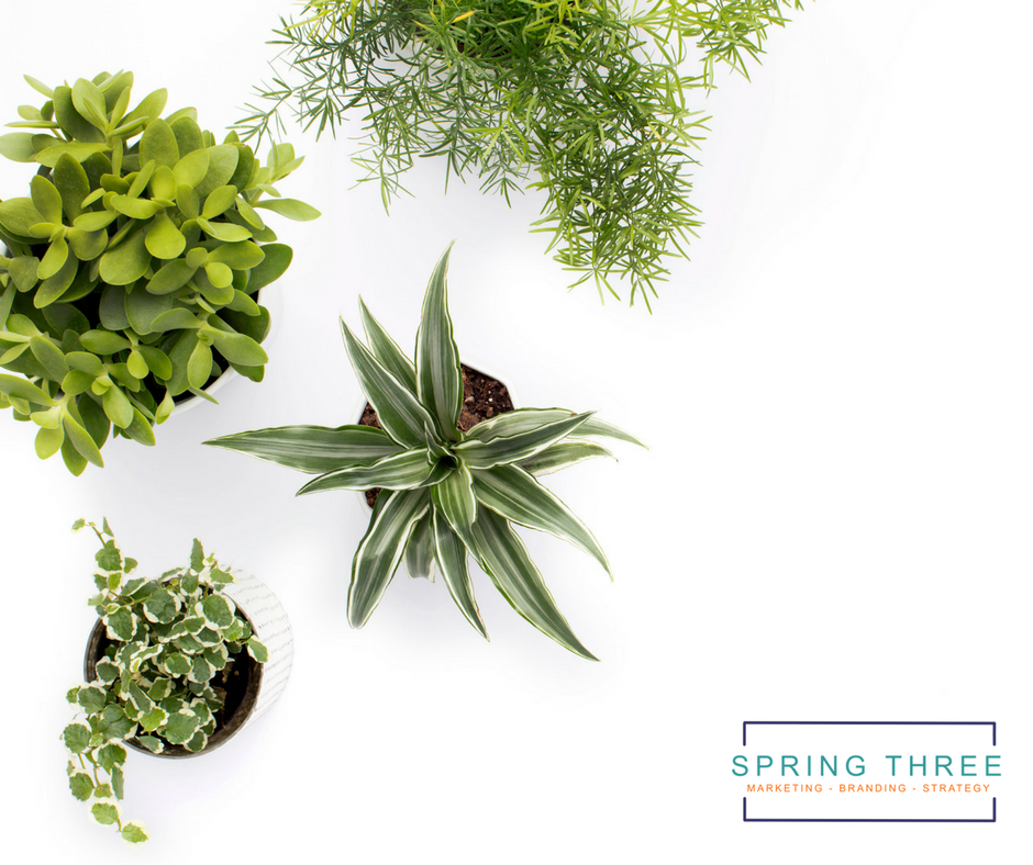 Spring Three - Marketing Tips