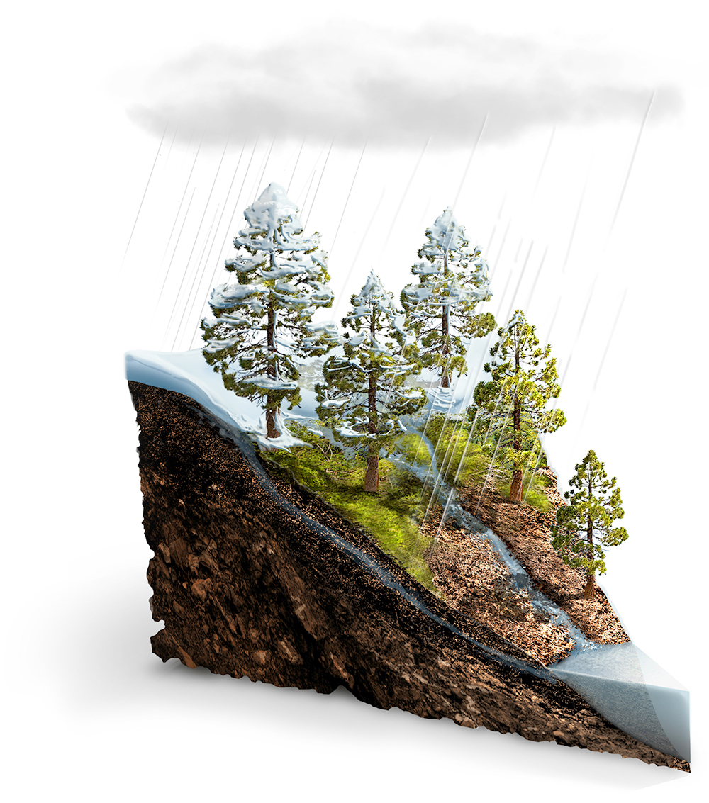 water balance.jpg