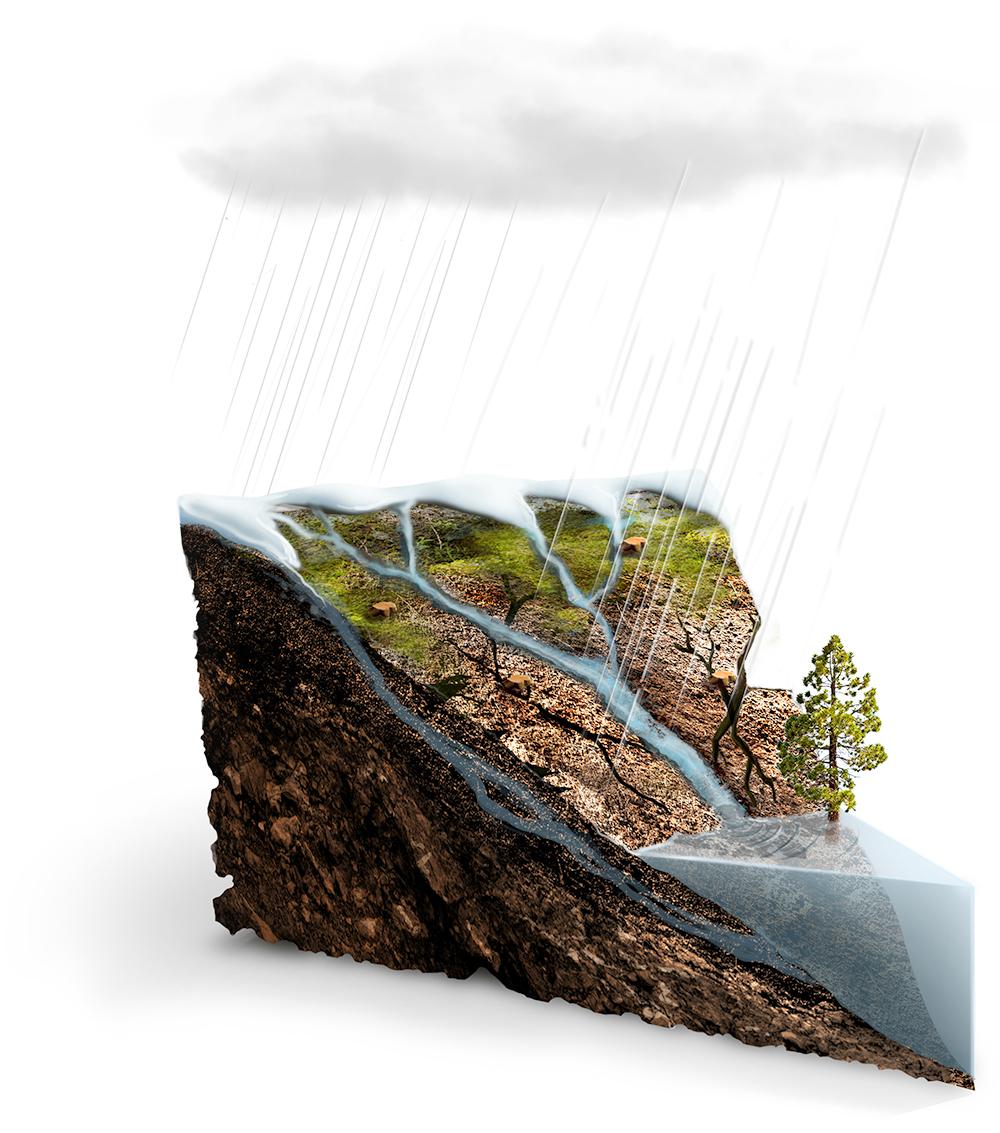 water balance2.jpg