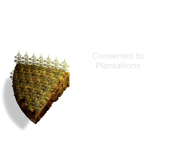 Conversion3.jpg