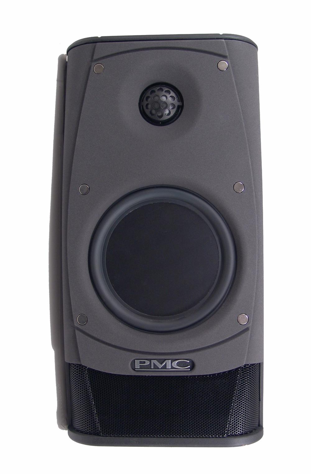 PMC AML-1