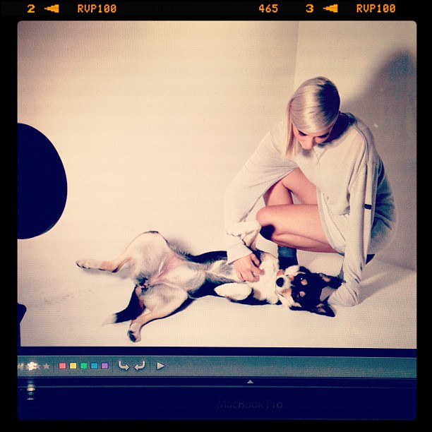 Lana making friends with the models…lol. #london #fashion #photography #beauty #editorial #collies #dogs #studio