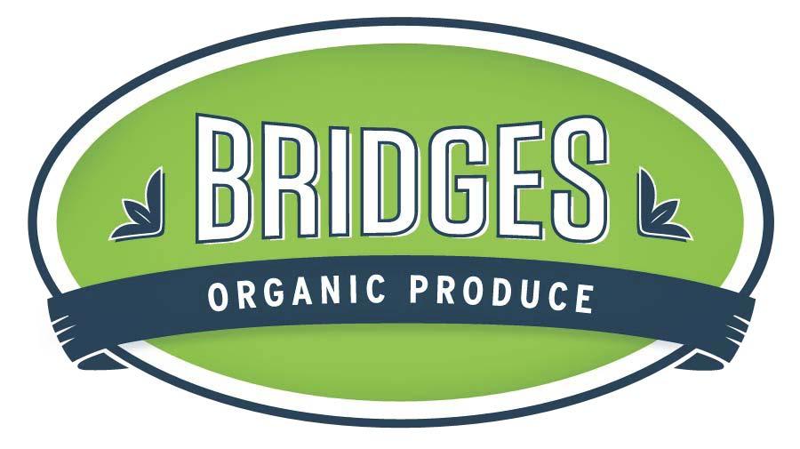 Bridges-NewInHouse PDFJPG.jpg
