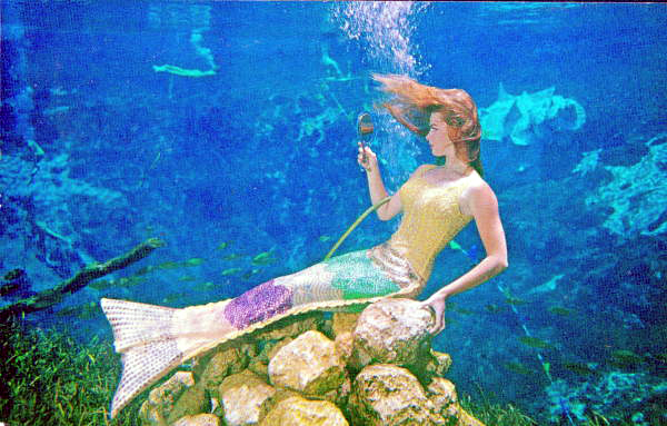 Mermaid Bonita Colson checking her hair in a mirror - Weeki Wachee, Florida.  State Archives of Florida,   Florida Memory  , http://floridamemory.com/items/show/163221.