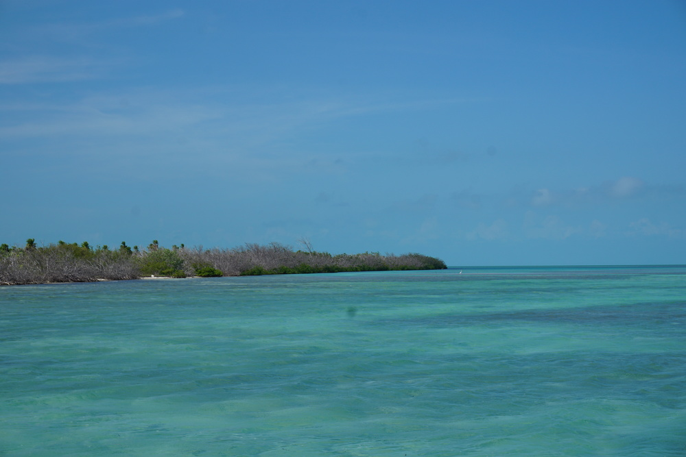 Off the coast of Cuba. Photo by Daniel Ward.