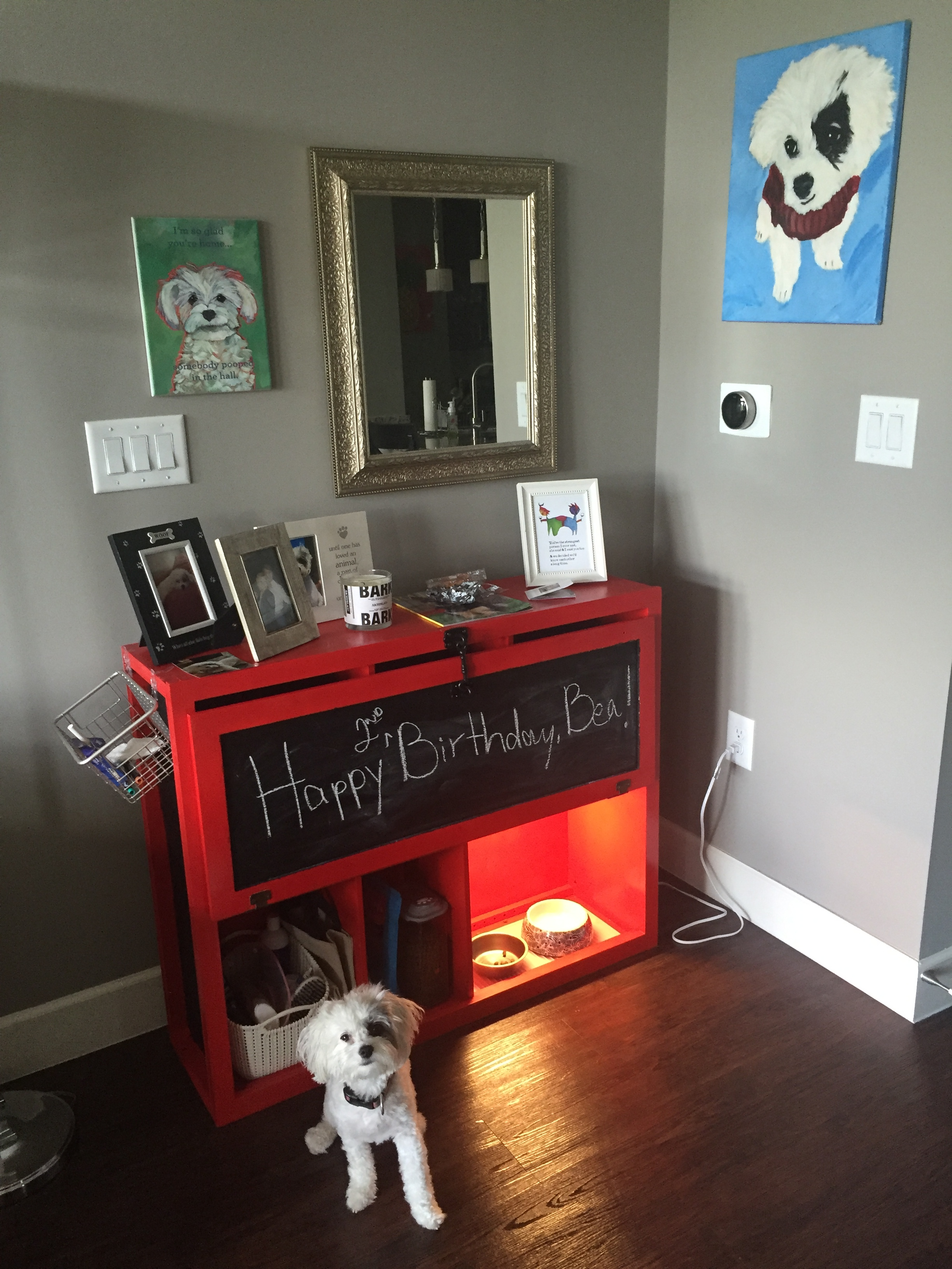 Attrayant DIY: Turn An Old Cabinet Into A Storage Unit (for Your Dog!)