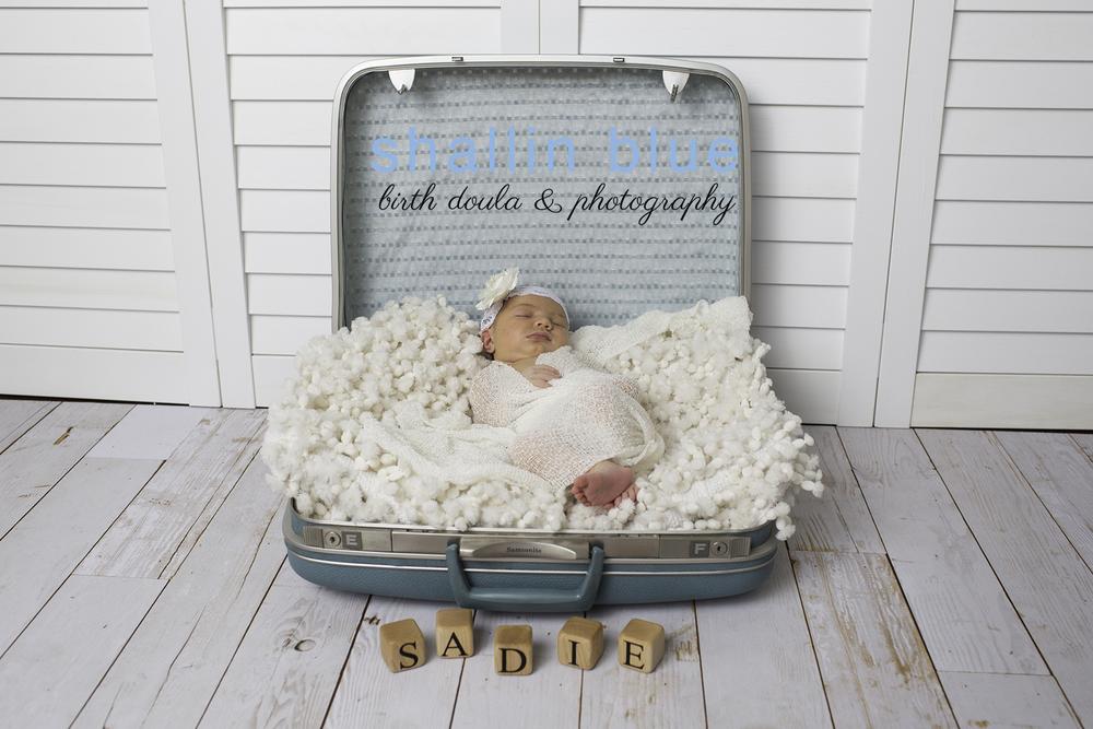newbornphotographermarinecorpsoahu.jpg