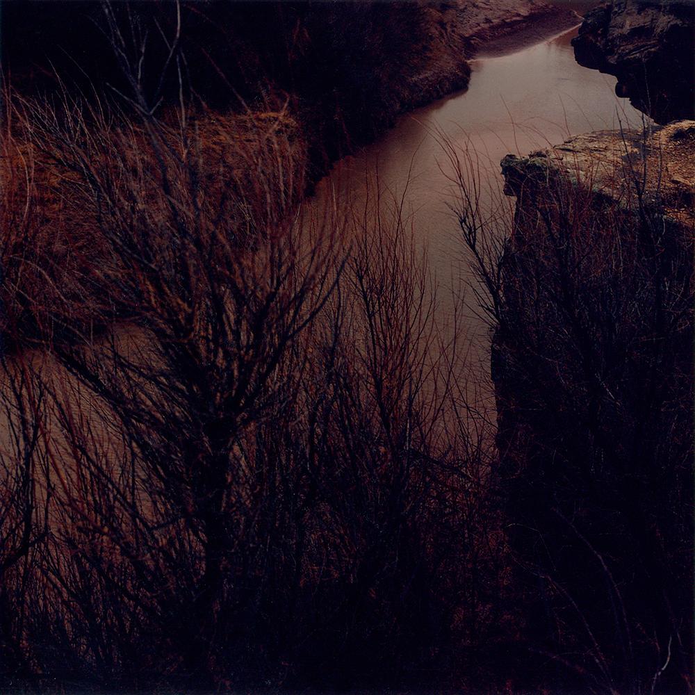 Horse - NM 1995