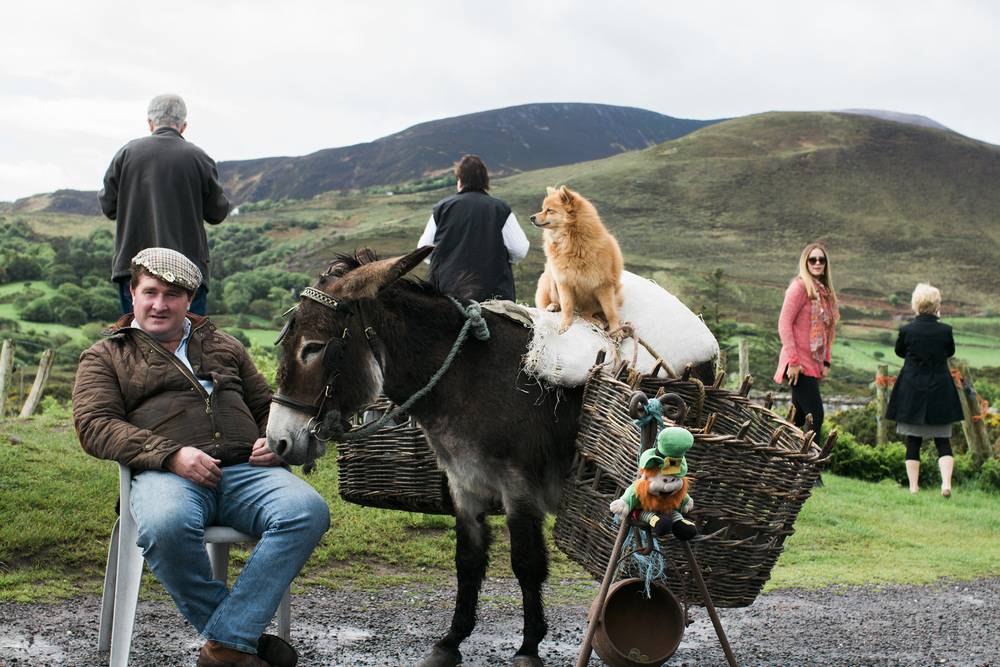 A man and his pomdonk duo - Ring of Kerry, Ireland