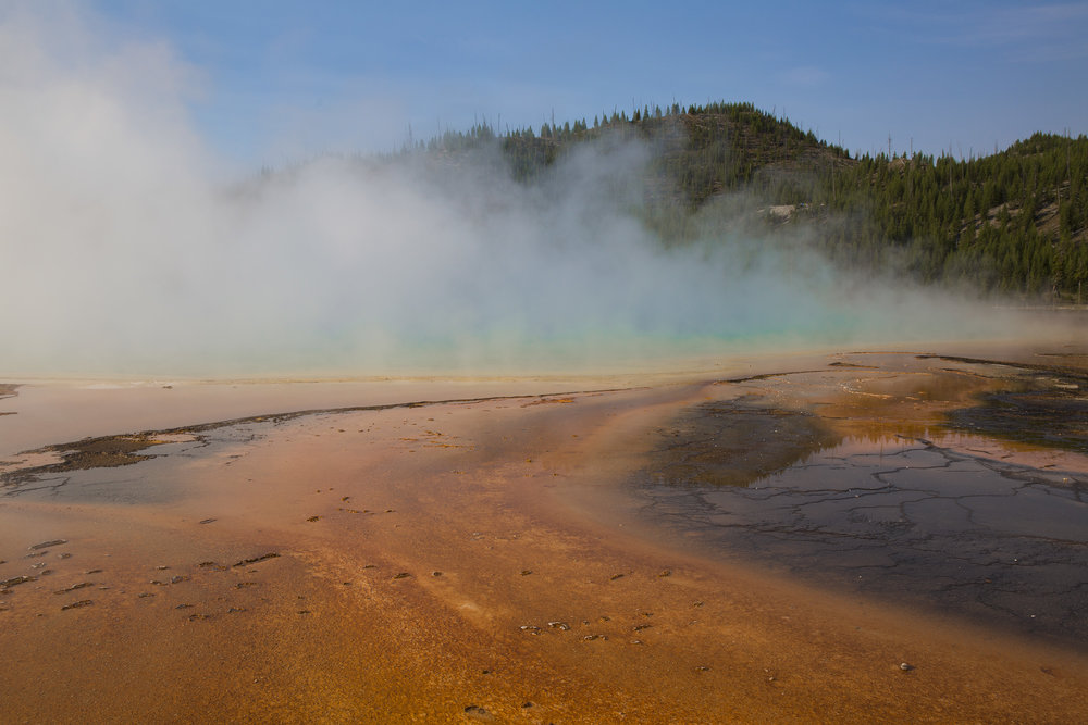 Grand Prismatic Spring  Yellowstone National Park, WY