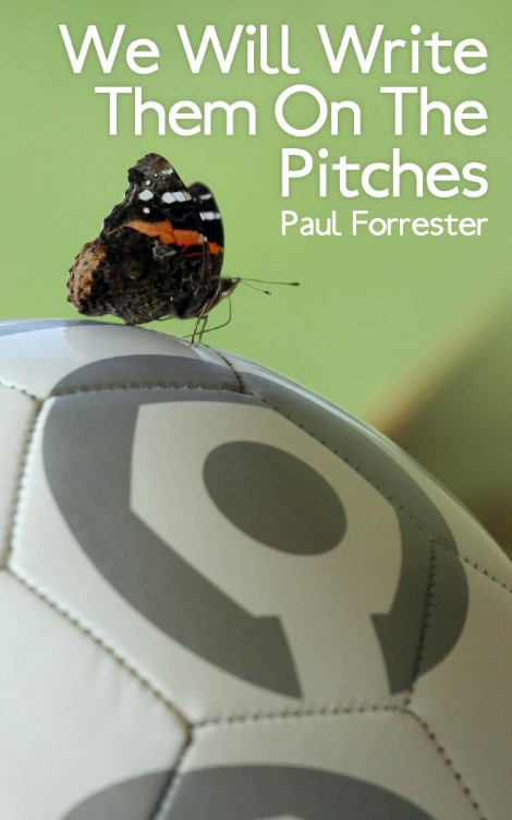 Cover image of  We Will Write Them on the Pitches