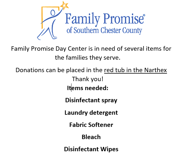 familiy promise needs.PNG