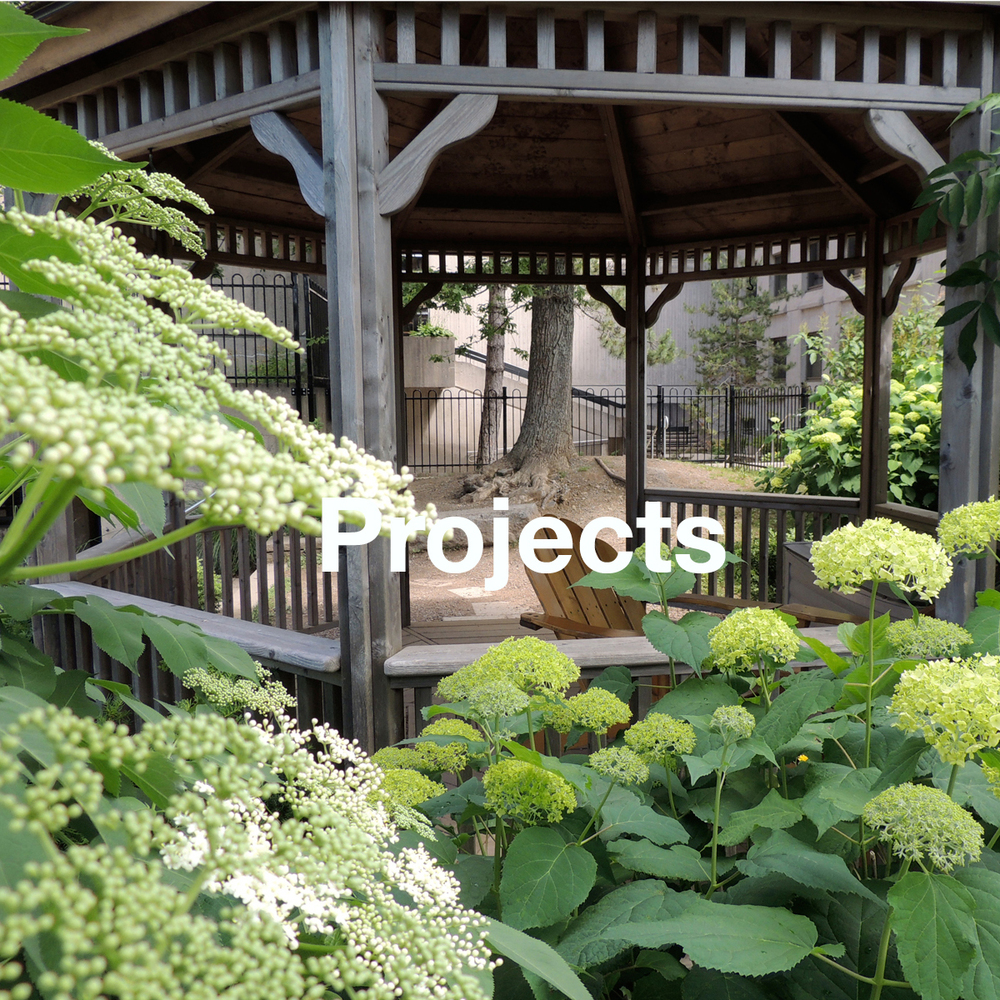 Landscape Design Online - Land Studio East