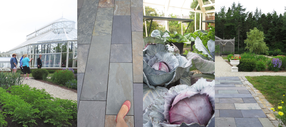 Kitchen and cutting gardens, Scotia slate, cabbage in the greenhouse, back walk