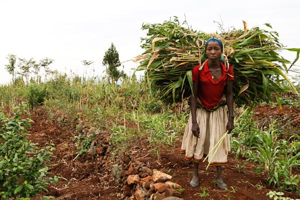 ethiopia1297blog.jpg