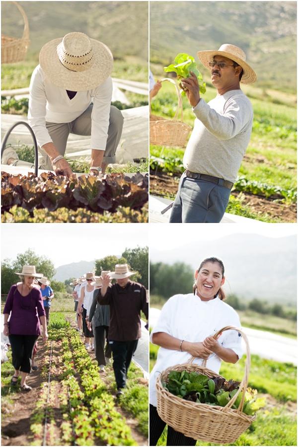 Rancho La Puerta Organic Farm 2