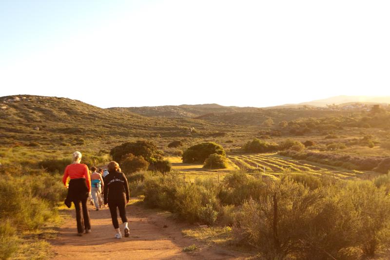Rancho La Puerta Hiking 5