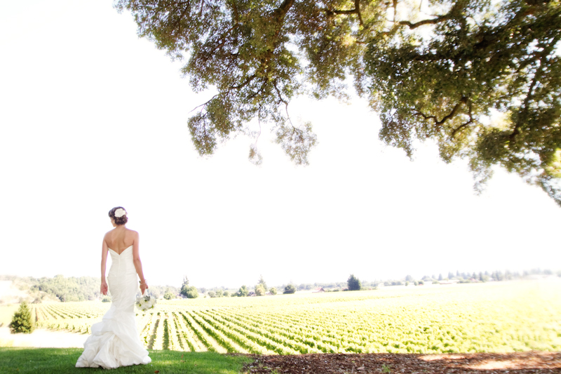 Healdsburg Country Gardens wedding 1