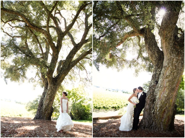 Healdsburg Country Gardens wedding 14