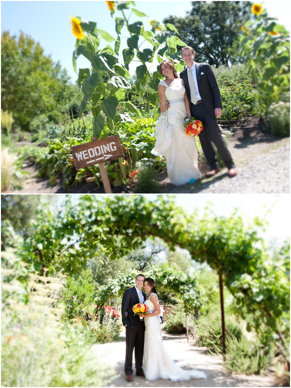 Campovida wedding 5