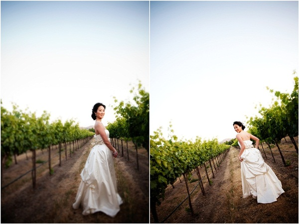 vineyard wedding 2