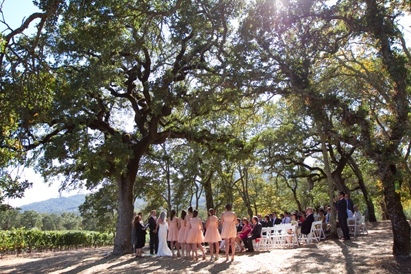Wine Country Wedding Julie Mikos 6