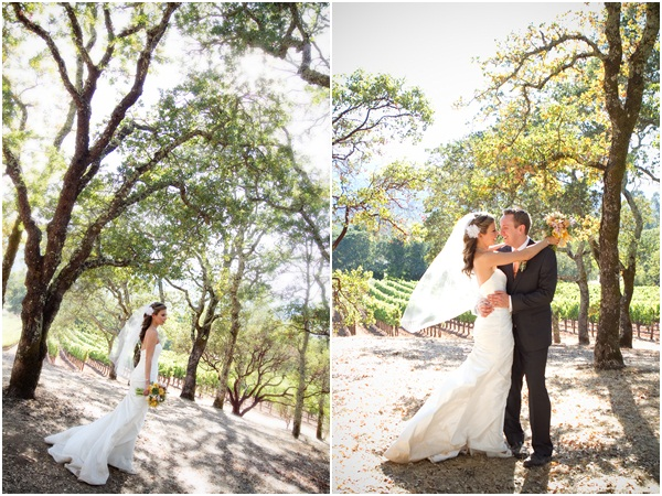 Wine Country Wedding Julie Mikos 9
